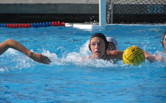 Daniel Norman shines on varsity water polo