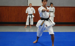 Brandon Hong fights his way to the international level